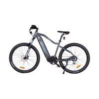 103319_Phoenix_E_Mountainbike_gross.jpg