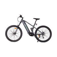 103320_Phoenix_E_Full_Mountainbike_gross.jpg